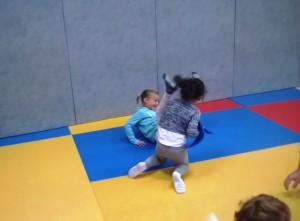 Judo (12)