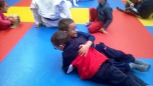 Judo (17)